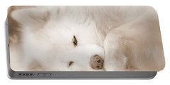 Pawsome Portable Battery Charger by Fiona Kennard