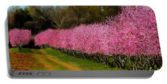 Portable Battery Charger featuring the photograph Peach Orchard In Carolina by Lydia Holly
