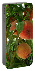 Portable Battery Charger featuring the photograph Peaches On The Tree by Kerri Mortenson
