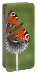 Peacock Butterfly Netherlands Portable Battery Charger