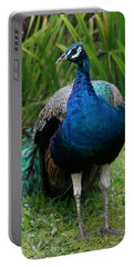 Peacock Portable Battery Charger by Pamela Walton
