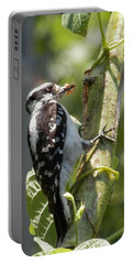 Peanut Butter Loving Red Caucated Woodpecker Portable Battery Charger by Belinda Lee