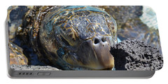 Peek-a-boo Turtle Portable Battery Charger