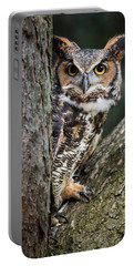 Peering Out Portable Battery Charger by Dale Kincaid