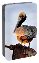 Portable Battery Charger featuring the photograph Pelican Looking Back by AJ  Schibig