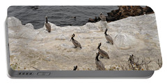 Pelicans Seals N Daisies  Portable Battery Charger