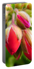 Portable Battery Charger featuring the photograph Pending Beauty by Deb Halloran