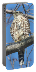 Perched Merlin Portable Battery Charger