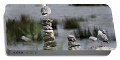 Perched On A Rock Cairn Portable Battery Charger