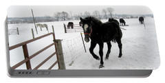 Percheron Horse Colt In Snow Portable Battery Charger