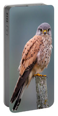 Perching Portable Battery Charger by Torbjorn Swenelius
