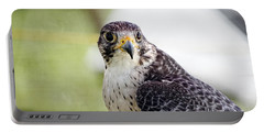 Peregrine Falcon Bird Of Prey Portable Battery Charger by Eleanor Abramson