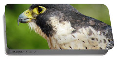Peregrine Falcon Portable Battery Charger by Cynthia Guinn