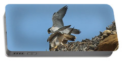 Peregrine Falcons - 4 Portable Battery Charger