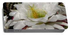 Portable Battery Charger featuring the photograph Petals And Thorns by Deb Halloran