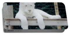Portable Battery Charger featuring the photograph Philadelphia Zoo White Lion by Donna Brown