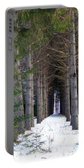 Pine Cathedral Portable Battery Charger