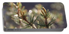 Portable Battery Charger featuring the photograph Pine by David S Reynolds