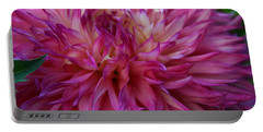 Portable Battery Charger featuring the photograph Pink And White Dahlia  by Denyse Duhaime