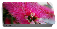 Portable Battery Charger featuring the photograph Pink Bottlebrush Flower - Within Border by Leanne Seymour