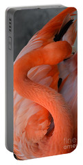 Pink Flamingo Portable Battery Charger by Robert Meanor