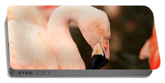 Pink Flamingos Portable Battery Charger