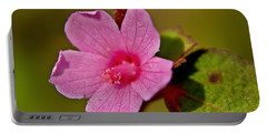 Portable Battery Charger featuring the photograph Pink Flower by Olga Hamilton