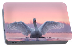 Swan Portable Battery Chargers