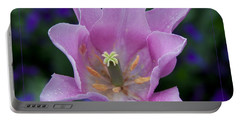 Pink Tulip Flower With A Spot Of Green Fine Art Floral Photography Print Portable Battery Charger