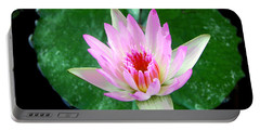 Portable Battery Charger featuring the photograph Pink Waterlily Flower by David Lawson