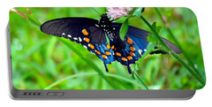 Pipevine Swallowtail Hanging On Portable Battery Charger