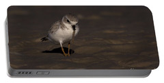 Piping Plover Photo Portable Battery Charger