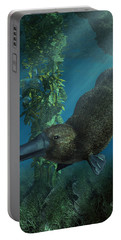 Platypus Portable Battery Charger