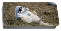 Portable Battery Charger featuring the photograph Playful Arctic Wolves by Wolves Only