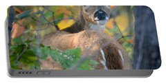 Playful Fawn Toddler Portable Battery Charger by Nava Thompson