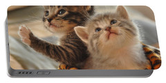 Playful Kittens Portable Battery Charger