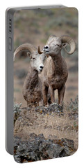 Playfull Rams Portable Battery Charger by Athena Mckinzie