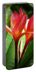 Plumerias Portable Battery Charger