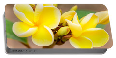 Plumerias Of Paradise 14 Portable Battery Charger