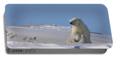 Polar Bear Sits Outside Her Den Portable Battery Charger