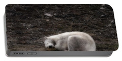 Polar Bear Sleeping, Spitsbergen Portable Battery Charger
