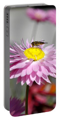 Portable Battery Charger featuring the photograph Pollination by Cathy Mahnke
