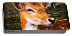 Portrait Male Fallow Deer Portable Battery Charger