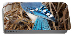 Portrait Of A Blue Jay Square Portable Battery Charger by Bill Wakeley