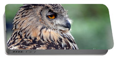 Portable Battery Charger featuring the photograph Portrait Of A Great Horned Owl by Jim Fitzpatrick