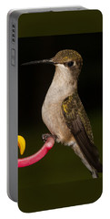 Portrait Of A Hummingbird Portable Battery Charger