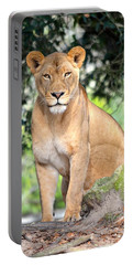 Portrait Of A Proud Lioness Portable Battery Charger