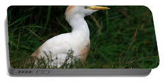 Portrait Of A White Egret Portable Battery Charger