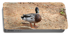Portable Battery Charger featuring the photograph Portrait Of An Alabama Duck 2 by Verana Stark