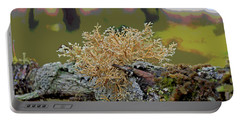 Posterized Antler Lichen Portable Battery Charger by Cathy Mahnke